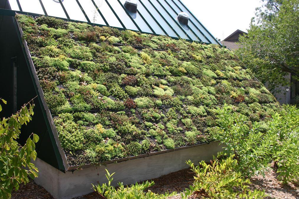 green roof, roofing