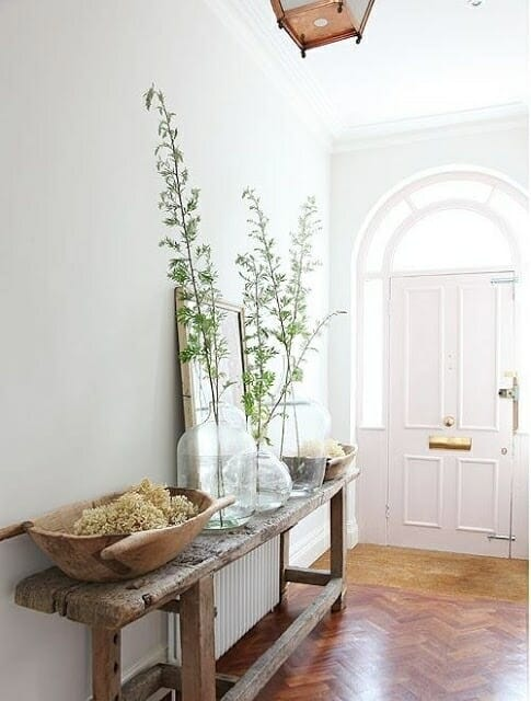 plants in white entryway