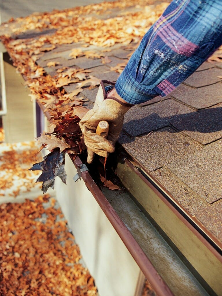 Cleaning out the gutters - Image Source
