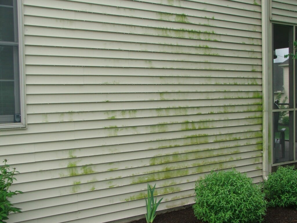 Dirty vinyl siding - Image Source