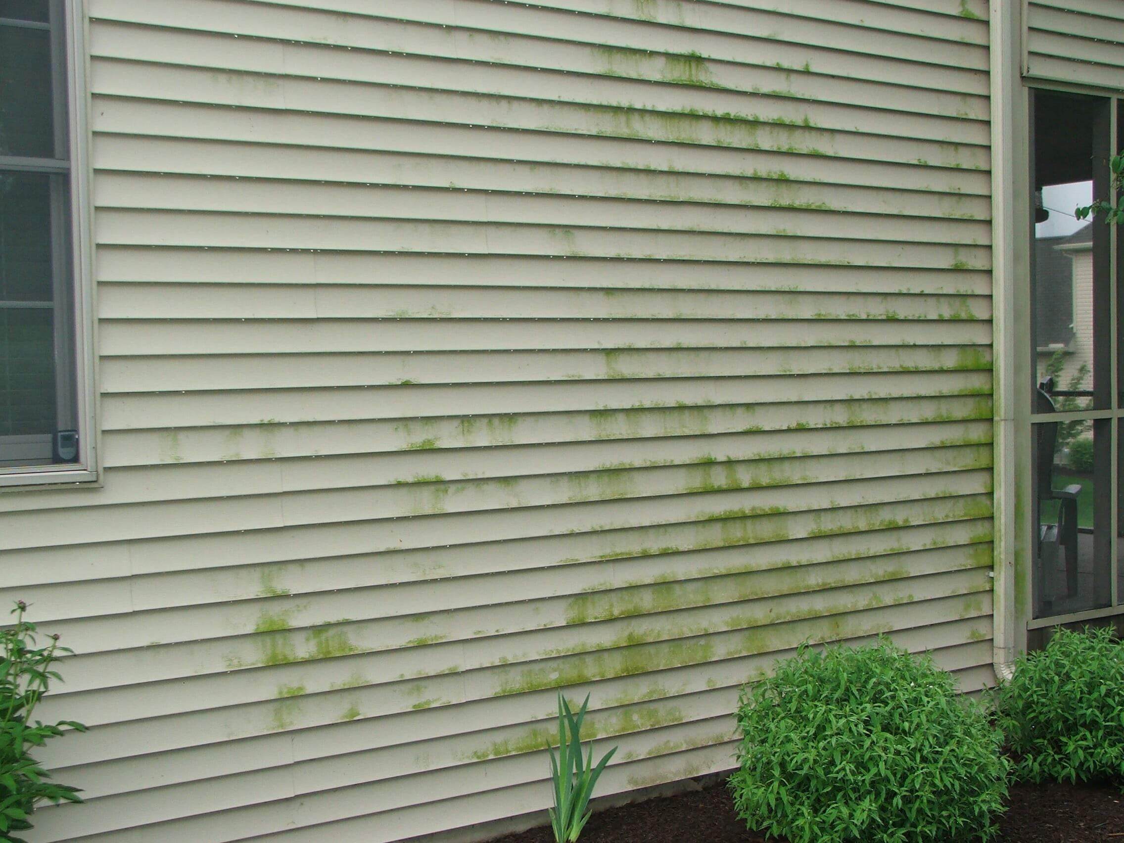 dirty vinyl siding