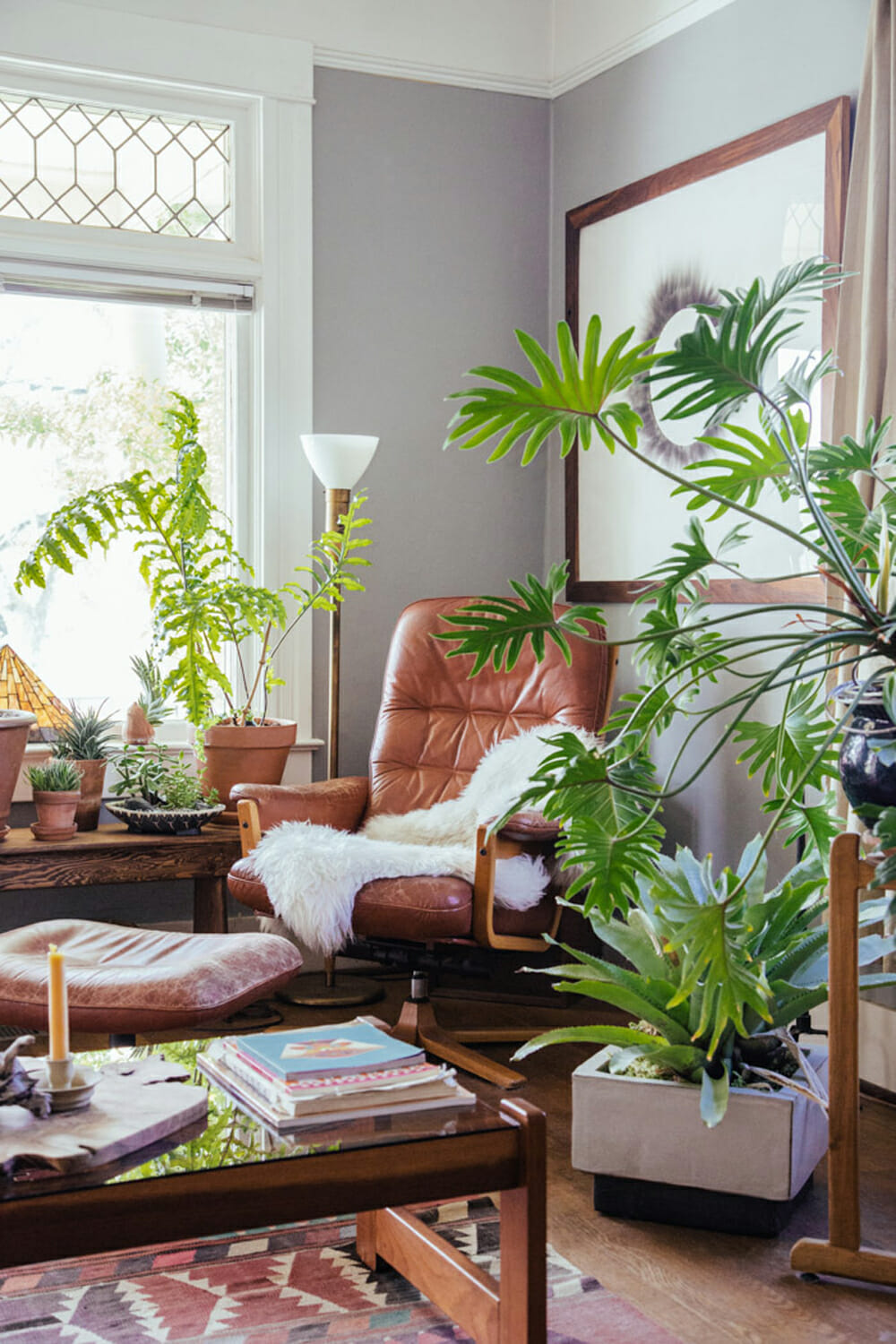 Decorating with plants modernize for Living room with indoor plants