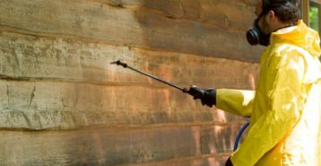 Siding Cleaning and Maintenance