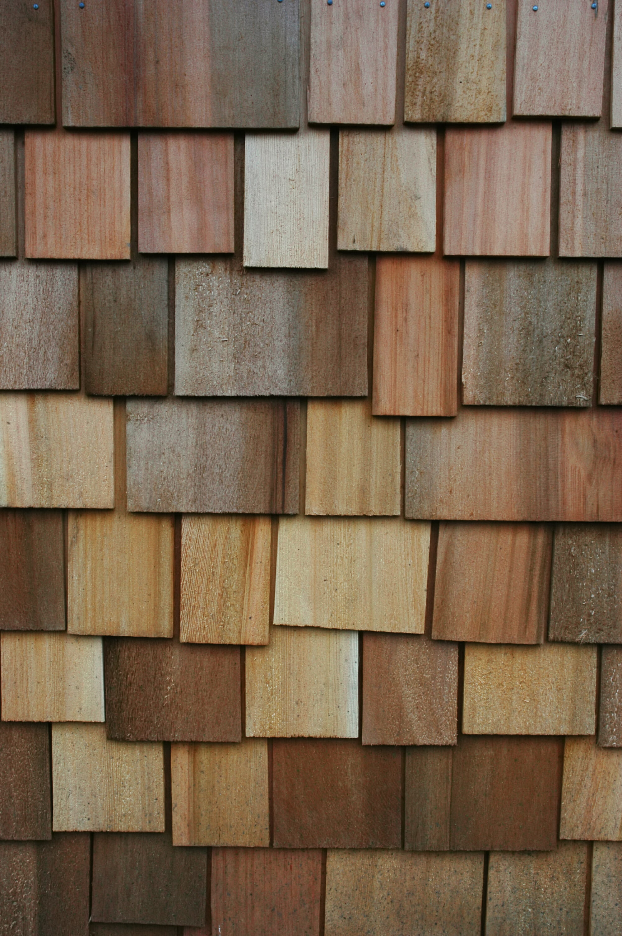 Wood siding compare prices save modernize for Lap wood siding styles