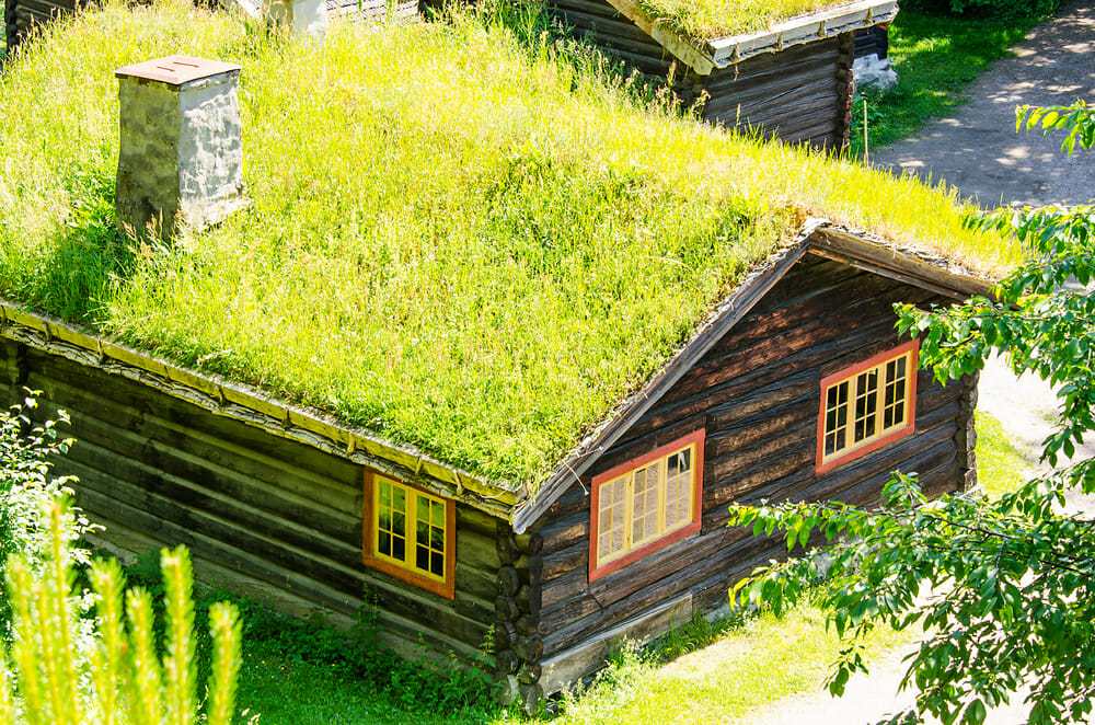 green roofs examples of unique eco friendly roofs modernize. Black Bedroom Furniture Sets. Home Design Ideas