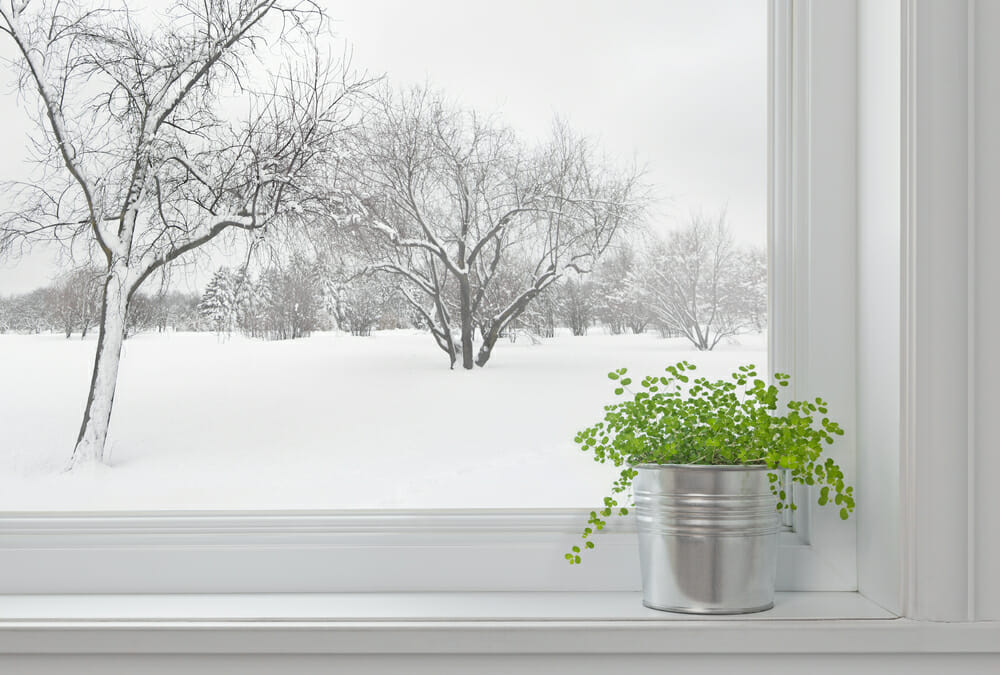 Snowy Winter Window