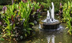 Can Fountains and Other Water Features Be Sustainable?