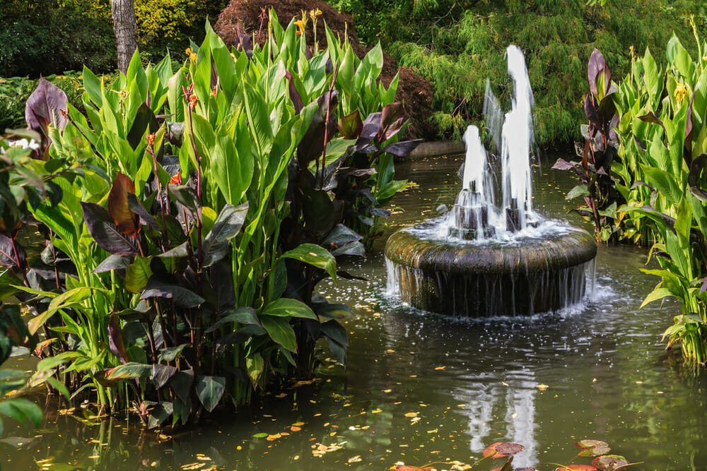 can fountains and other water features be sustainable modernize