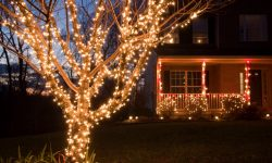 Energy-Efficient Outdoor Holiday Lights
