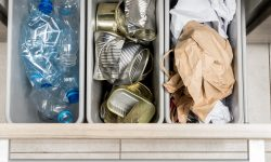 How to Organize Your Home Recycling System