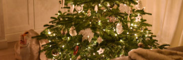 Christmas Trees: Artificial, Fresh, or Living?