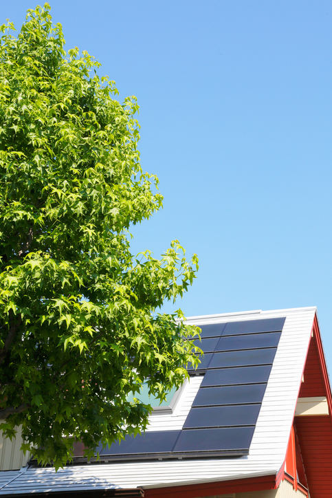Common Causes Of Damage To Solar Panels And How To Avoid