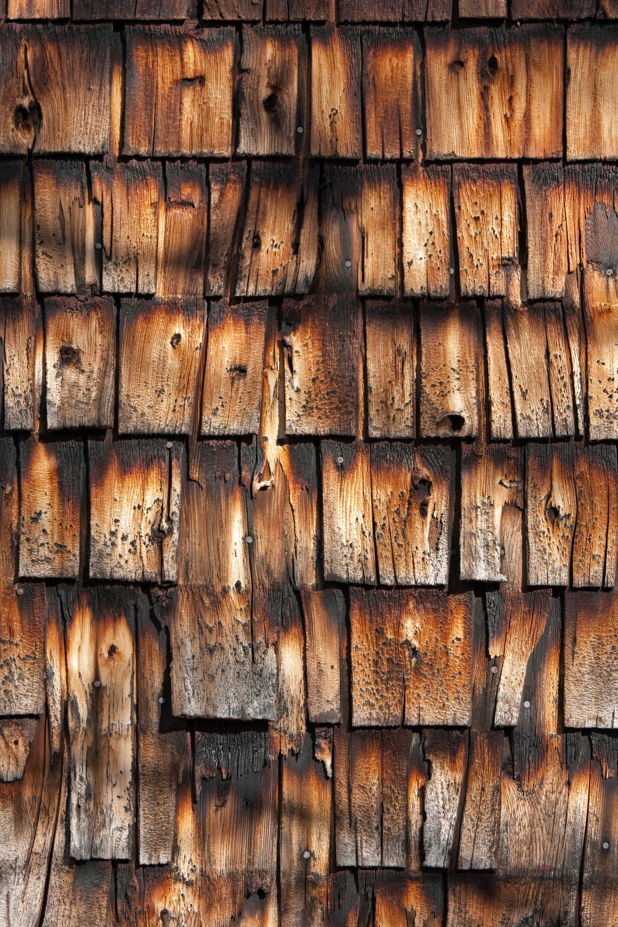 burned siding
