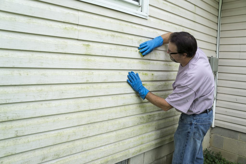 Home Siding Repair Installation Compare Save Modernize