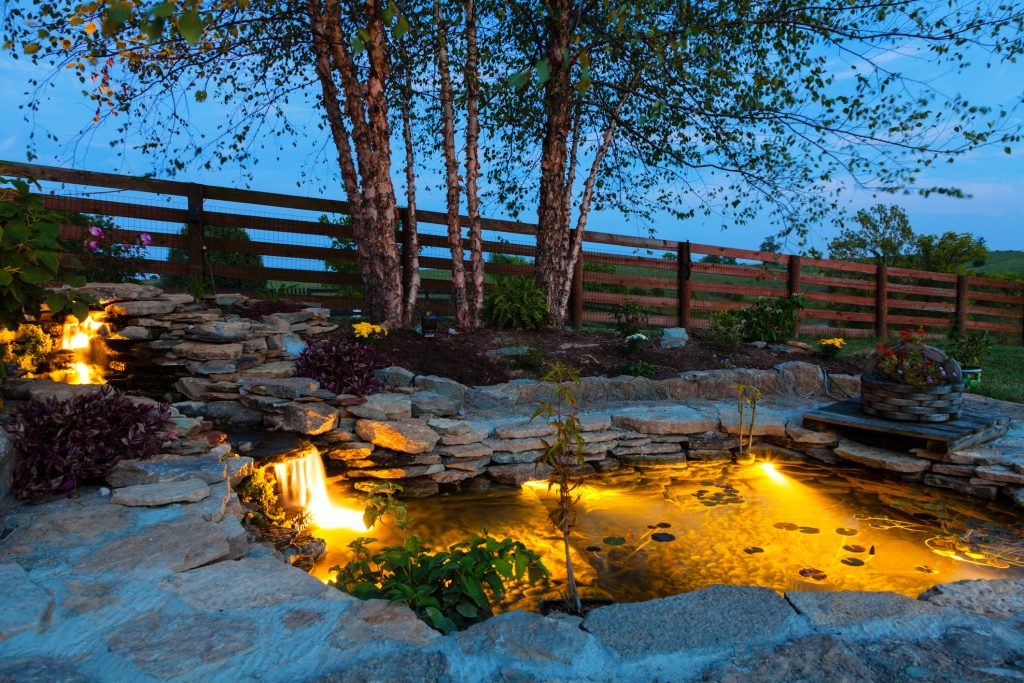 Garden pond with lights