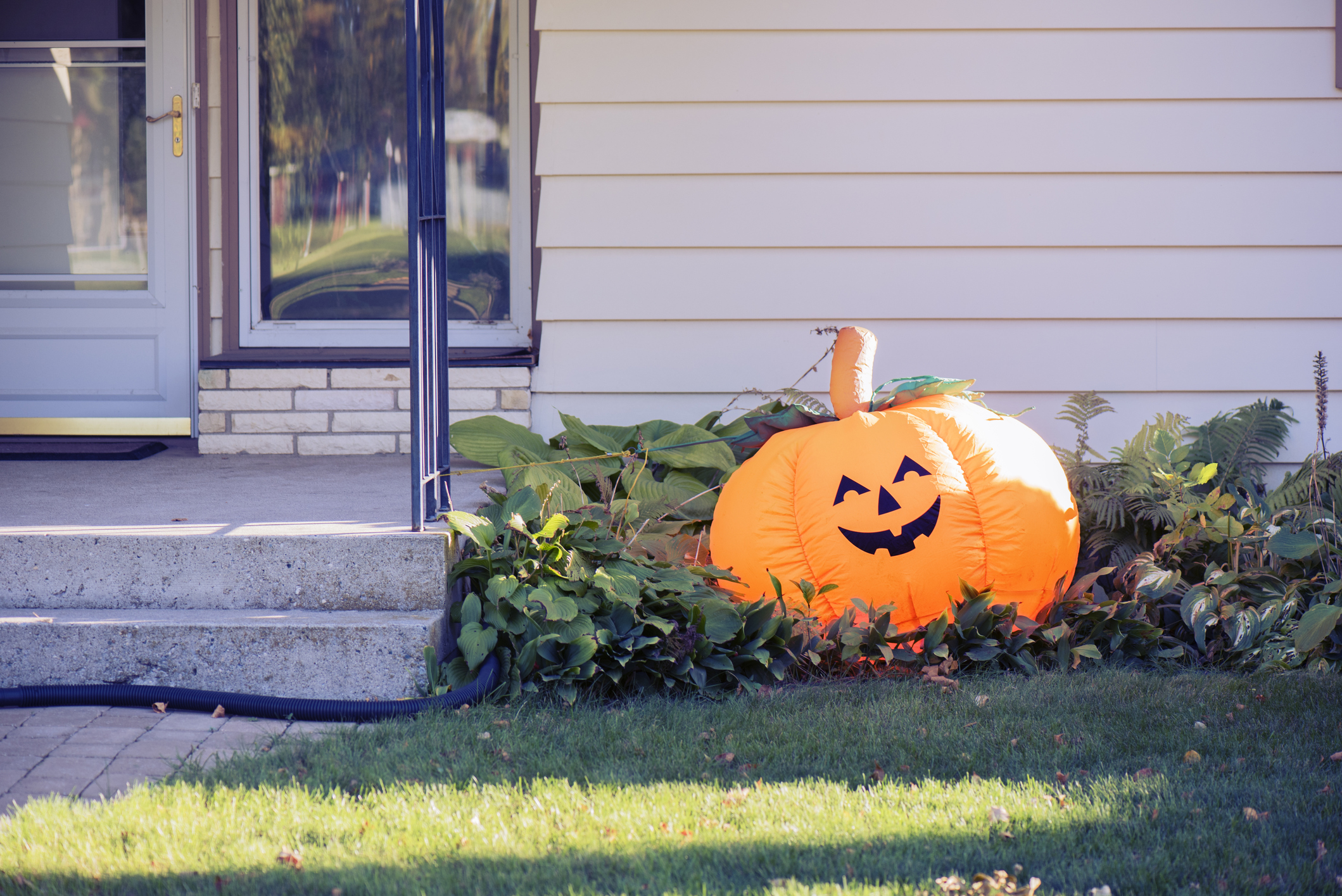 pumpkin in front of siding