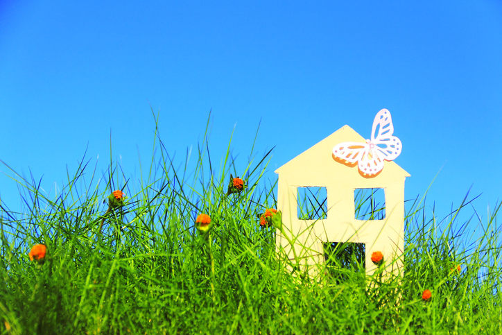 A paper house and butterfly over grass on blue sky.