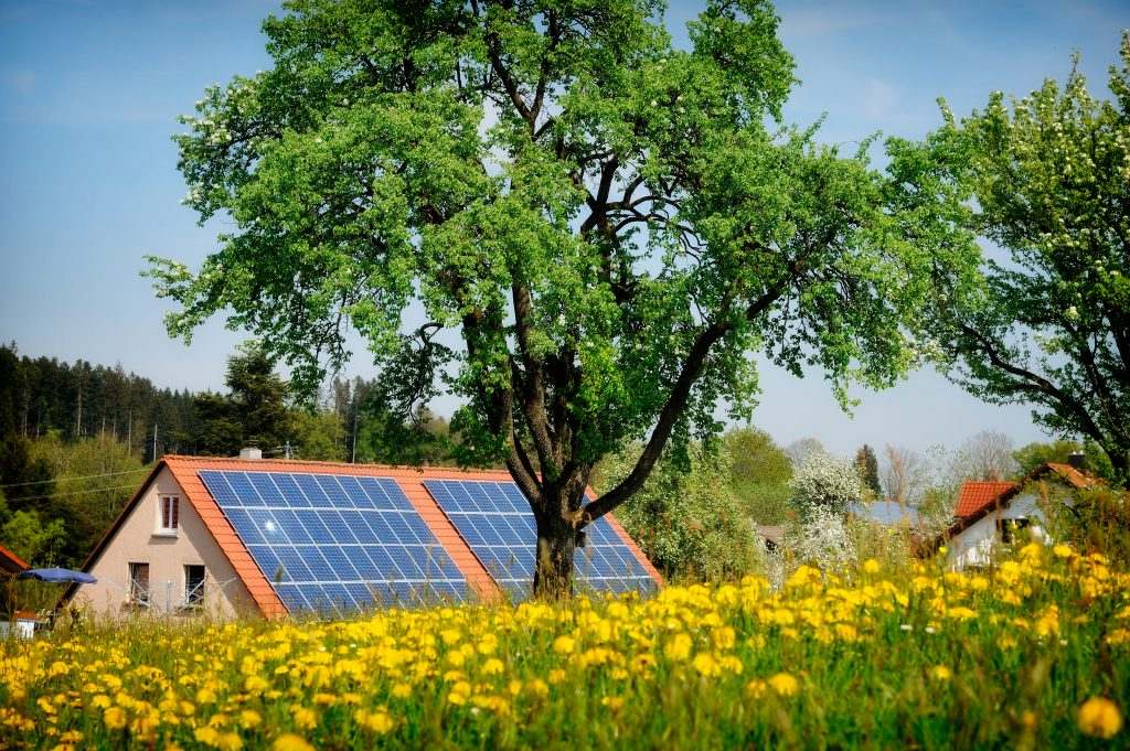 solar home in a field of wildflowers
