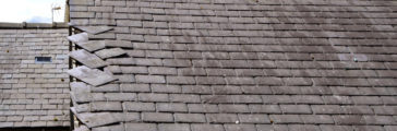 Ask an Expert: Handling Roof Damage and Maintenance