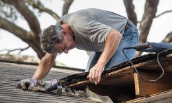 Interview with an Expert: How to Find a Roofer with Integrity
