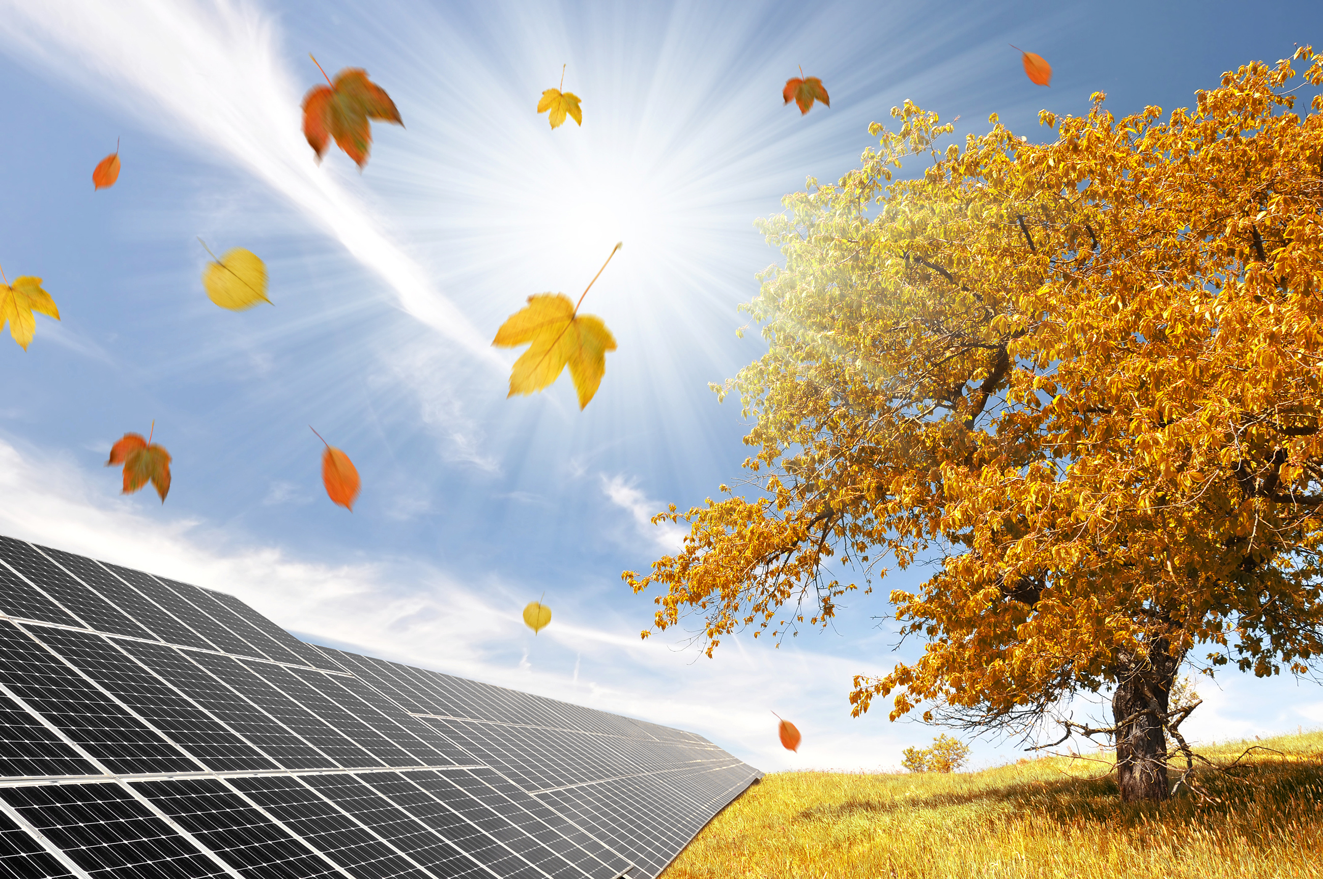 Autumn landscape with solar panels